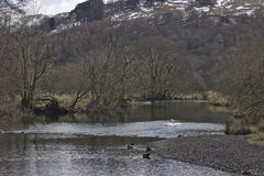 River Rothay, Cumbria. River Rothay at the end of winter Stock Photography