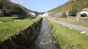 River running through Boscastle Cornwall England UK stock footage