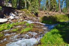 River running through Lassen Volcano Park