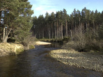 River running into Loch Morlich, Avimore. Scotland Royalty Free Stock Photography
