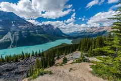 Peyto Lake, Mountains Canada royalty free stock photo