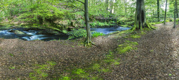 River running throught the british countryside Royalty Free Stock Photos