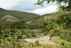 River running through Tierra del Fuego National Park Royalty Free Stock Image