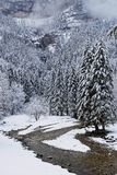 A river runs through the cliffs. In a winter landscape of a French Alps forest Royalty Free Stock Photography