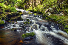 River runs over boulders in the forest Stock Images