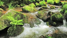 River runs over boulders stock video footage