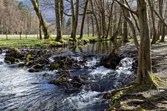 A river runs throught the forest with a cascade. A river runs throught the forest with a small waterfall Stock Images