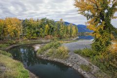 River runs by trees in fall color. royalty free stock photo