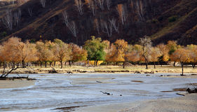 The river runs through the Ulan Buh grassland. In autumn in Inner Mongolia, very beautiful plateau scenery.take photo in Ulan Buh China Stock Images