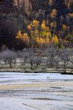 The river runs through the Ulan Buh grassland. In autumn in Inner Mongolia, very beautiful plateau scenery.take photo in Ulan Buh China Royalty Free Stock Images