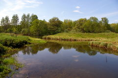 River Ruza Stock Photography