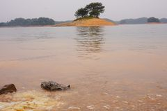 River`s island in West Lake royalty free stock photo