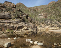 River in Sabino. A river in Arizona's Sabino Canyon Royalty Free Stock Images