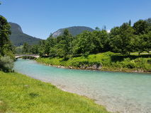 River in Salzburg. Rivers turquoises Water Forest royalty free stock photography