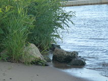 River Sand and Rocks Royalty Free Stock Image