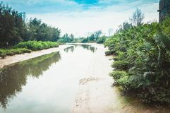 River with sandy shores and tropical vegetation. Against the blue sky Royalty Free Stock Photo