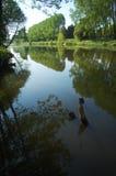 River Sarthe Royalty Free Stock Photography
