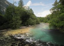 River Savica above lake Bohinj Royalty Free Stock Photo