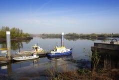 River scene royalty free stock photo