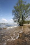 River scene. Beautiful river scene with a wave washing up the shore stock photography