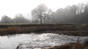A river scene in England with trees shrouded in mist Stock Photography