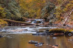 River scene in the forest surrounded by fall foliage Stock Image