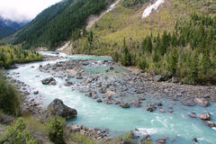 River scenery Stock Photography