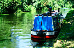 River scenery with a narrowboat. Narrowboat on the river Cam, England Stock Photos