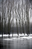 River scenery after snow Royalty Free Stock Photos