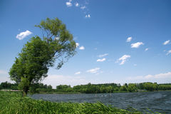 River scenery under the blue sky Royalty Free Stock Photos
