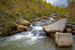 River in scenic forest Stock Image