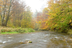 River Schwechat Royalty Free Stock Photography