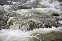 River with selective focus Stock Photo