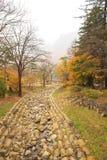 River at Seoraksan national park during autumn season. Royalty Free Stock Photography