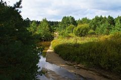 River in September. In a beautiful light royalty free stock photo