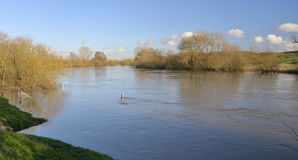 River Severn in flood Stock Images