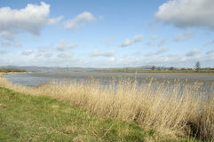 River Severn at Upper Framilode Stock Photography