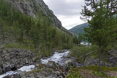 The river Shavla in front of the lake Shavlinskoe. Altai Mountai stock images
