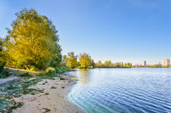 River Shore and Trees Royalty Free Stock Images