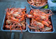River shrimp or river prawn grilled barbecue seafood . close up on fired food. stock images