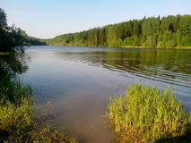 River in Siberia, good weather, forest lake for recreation royalty free stock photo