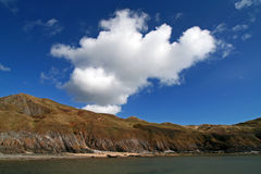 River side. River on three cliff bay in the gower peninsula, south wales, UK royalty free stock photos