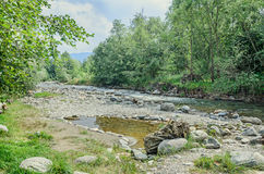River side, Europe, Romania, Sibiu County. Rocks, trees and wate Royalty Free Stock Photo