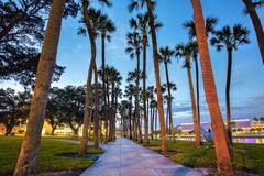 Free River Side Trail At Night, Lined With Palm Trees At The University Of Tampa Stock Images - 159660984