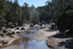 River a sierra Tarahumara Royalty Free Stock Images