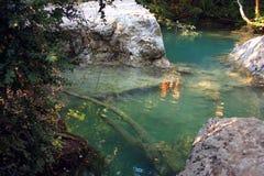 River - Sillans-la-Cascade - France Royalty Free Stock Photo
