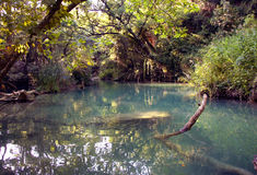 Unspoiled river Royalty Free Stock Photography