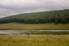 River is slowly flowing. Grey clouds in the early autumn sky over green fields, trees, forests and huge mountains close. A lot of. Meadow herbs around. Evening Royalty Free Stock Image