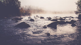 River. Small river at finland. It was early morning and theres fog and nature, trees etc Royalty Free Stock Image