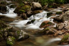 River. Small mountain river inside in the forest Stock Photos